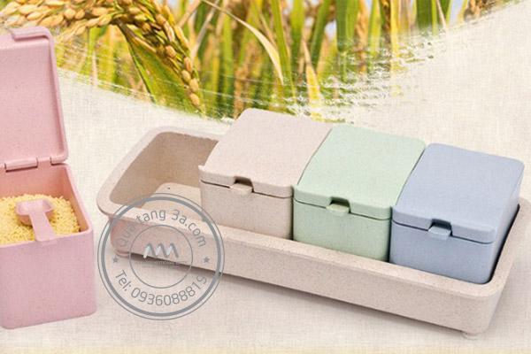 Bộ hộp đựng gia vị Levant - Quà tặng thân thiện môi trường